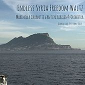 Play & Download Endless Syria Freedom Waltz by Orchestra | Napster