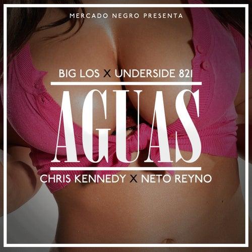 Aguas (feat. Underside821, Chris Kennedy & Neto Reyno) by Big Los