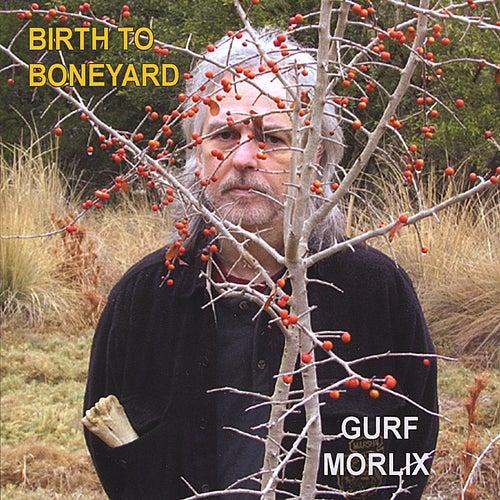 Play & Download Birth to Boneyard by Gurf Morlix | Napster