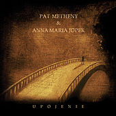 Upojenie by Pat Metheny
