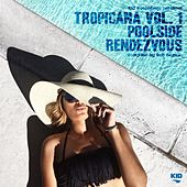 Play & Download Kid Recordings Presents Tropicana, Vol. 1: Poolside Rendezvous by Various Artists | Napster