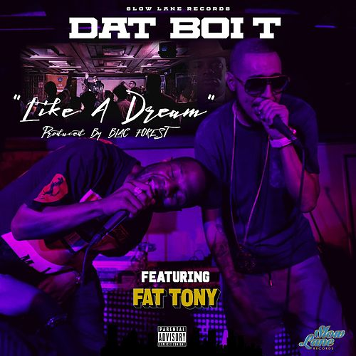 Like a Dream (feat. Fat Tony) by Dat Boi T