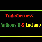 Togetherness Anthony B & Luciano by Various Artists