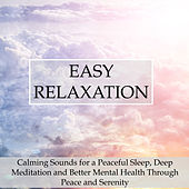 Play & Download Easy Relaxation - Calming Sounds for a Peaceful Sleep, Deep Meditation and Better Mental Health Through Peace and Serenity by Spa Relaxation | Napster