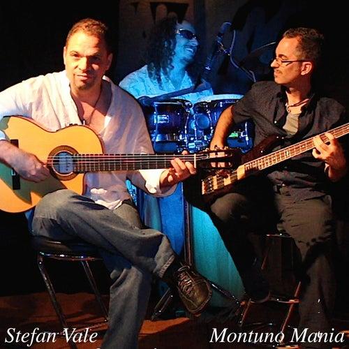 Montuno Mania (Miami Latin Jazz Festival) by Stefan Vale