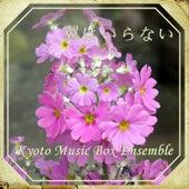 Play & Download Tsubasawa Iranai (Music Box) by Kyoto Music Box Ensemble | Napster