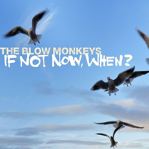 Play & Download If Not Now, When? by The Blow Monkeys | Napster