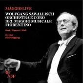 Play & Download Franz Joseph Haydn: Die Schöpfung, Vol. 1 by Various Artists   Napster