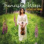 Sinfonie der Träume von Franziska Wiese