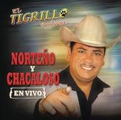Play & Download Norteno Y Chacaloso En Vivo by El Tigrillo Palma | Napster