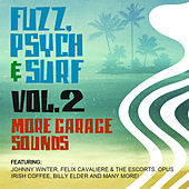 Play & Download Fuzz, Psych & Surf, Vol. 2 - More Garage Sounds by Various Artists | Napster