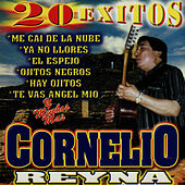Play & Download 20 Exitos by Cornelio Reyna | Napster