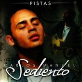 Sediento Pistas by Carlos Manuel