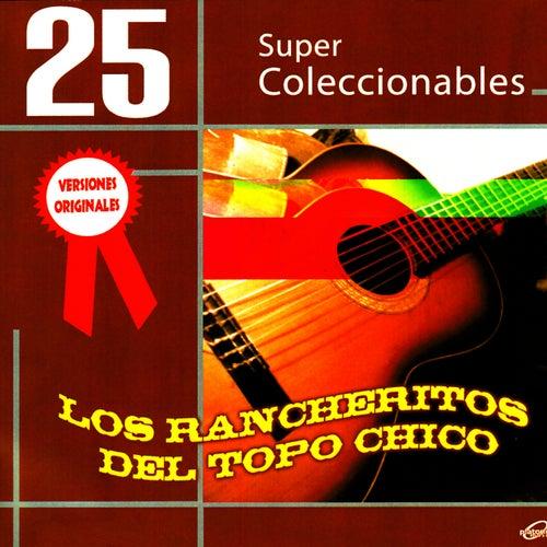Play & Download 25 Super Coleccionables (Versiones Originales) by Los Rancheritos Del Topo Chico | Napster