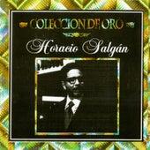 Play & Download Selección de Oro - Horacio Salgán by Horacio Salgan | Napster