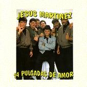 14 Pulgadas de Amor by Jesus Martinez