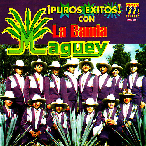 Play & Download Puros Exitos by Banda Maguey | Napster