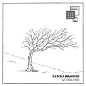 Play & Download Woodland by Sascha Braemer | Napster