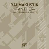 Play & Download Panther by Raumakustik | Napster