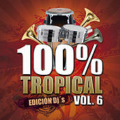 100% Tropical, Vol. 6 by Various Artists