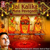 Play & Download Jai Kalika Mata Pavagadh by Hemant Chauhan | Napster
