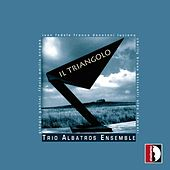 Play & Download Il Triangolo by Trio Albatros | Napster