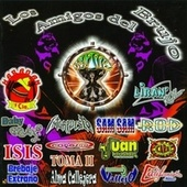 Los Amigos del Brujo by Various Artists