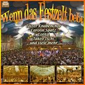 Play & Download Wenn das Festzelt bebt by Various Artists | Napster