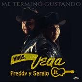 Play & Download Me Terminó Gustando by Hermanos Vega JR | Napster