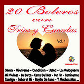 20 Boleros Con Trios y Cuerdas, Vol. 1 by Various Artists