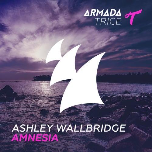 Play & Download Amnesia by Ashley Wallbridge | Napster