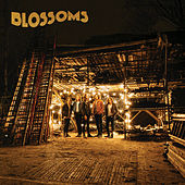 Honey Sweet by Blossoms
