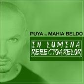 In lumina reflectoarelor by Puya