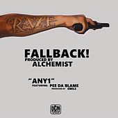 Fall Back von Various Artists