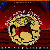 Play & Download Native Aromatherapy: Shaman's Wisdom by Mesa Music Consort | Napster
