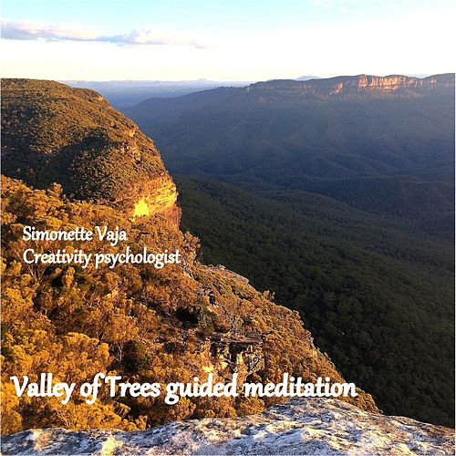 Play & Download Valley of Trees (Guided Meditation) by Simonette Vaja | Napster