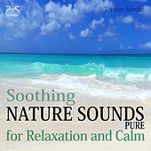 Play & Download Soothing Nature Sounds Pure - For Relaxation and Calm by Torsten Abrolat | Napster