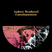 Play & Download Consolamentum by Andrew Weatherall | Napster