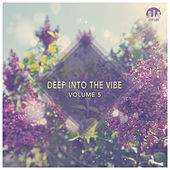 Play & Download Deep Into the Vibe, Vol. 5 by Various Artists | Napster