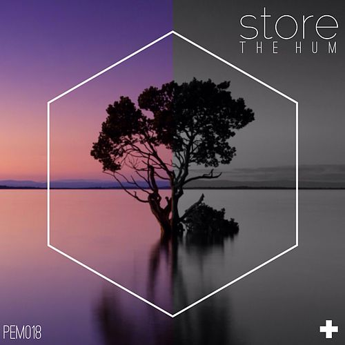 The Hum by Store