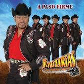 Play & Download A Paso Firme by Polo Urias Y Su Maquina Norteña | Napster