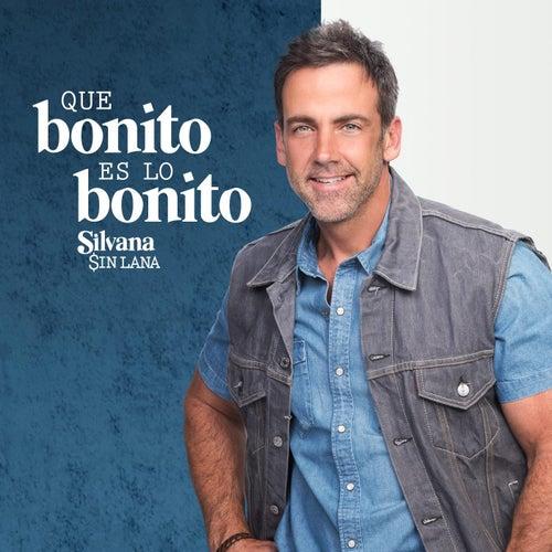 Play & Download Que Bonito Es Lo Bonito Silvana by Carlos Ponce | Napster