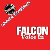 Voice In by The Falcon