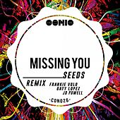 Missing You by The Seeds