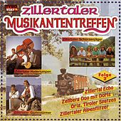 Zillertaler Musikantentreffen - Folge 2 by Various Artists
