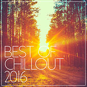 Play & Download Best Of Chill Out 2016 by Various Artists | Napster