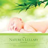 Nature's Lullaby Collection by Dan Gibson's Solitudes