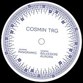 Play & Download Panoramic by Cosmin TRG | Napster