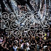 Play & Download Cocoon Morphs Tokyo by Various Artists | Napster