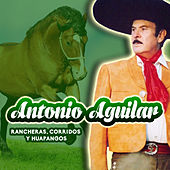 Play & Download Rancheras, Corridos y Huapangos by Antonio Aguilar | Napster